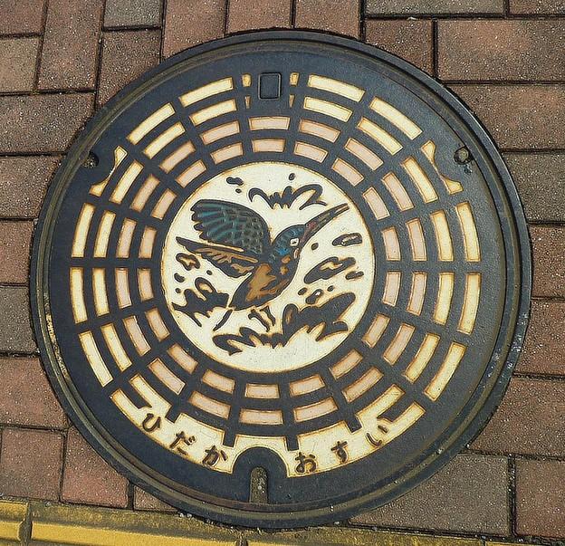 Photos: 埼玉県日高市 市の鳥、かわせみ。