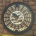 埼玉県日高市 市の鳥、かわせみ。