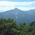 Photos: 1.2.4の山