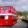 Photos: ロンドンバス@リトルワールド(4)