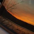 Photos: The Backseat