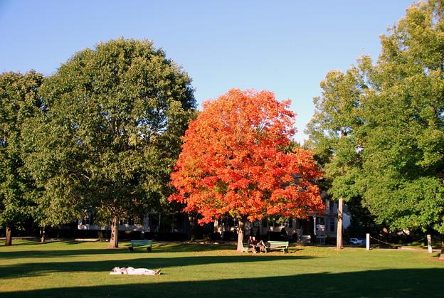 Photos: Autumn Begins 9-26-14