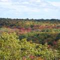 Photos: Fall in the Air 10-05-14