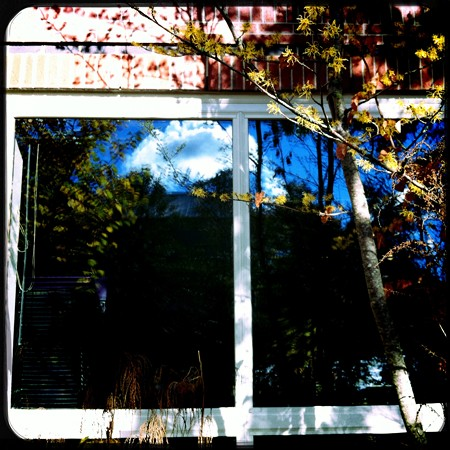 At the Library II 10-17-15