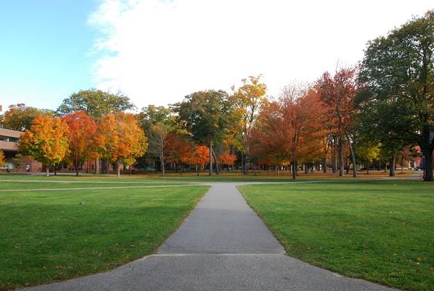 Campus in Autumn 10-24-15