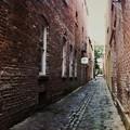 写真: Walking in the Alley 12-27-15
