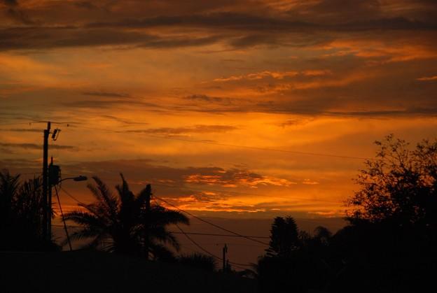 Photos: The Dawn 1-10-16