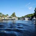 Photos: The Canal 1-16-16
