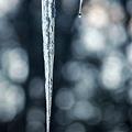 Photos: Icicles of Dawn 1-6-10
