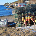 写真: Mackerel Cove 2-14-09