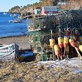 Mackerel Cove 2-14-09