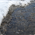 写真: Melting Snow 4-2-11