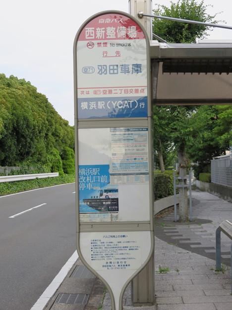 20140712 (15)
