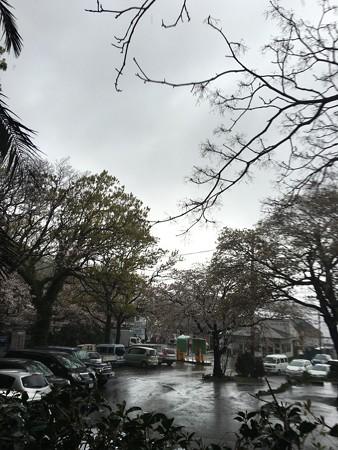 大瀬崎到着、やっぱり雨だったわー