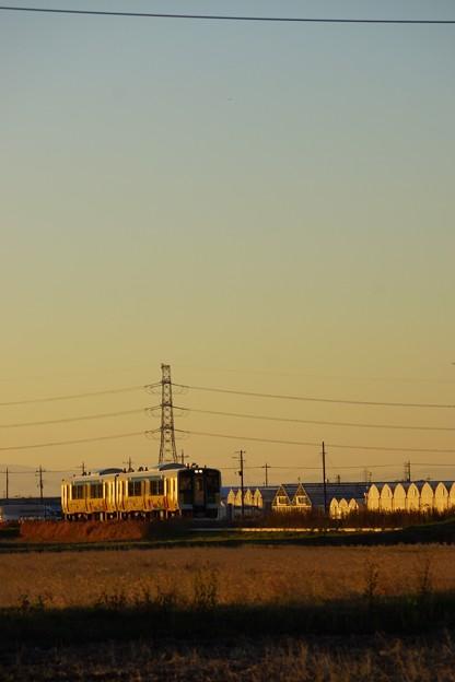 列車とビニールハウスがキラリ