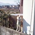 Photos: ぅぐ ぐ