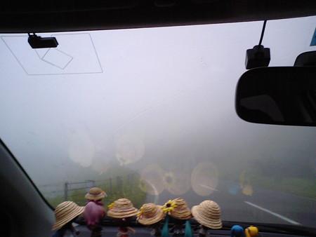 知床峠を越え、羅臼町に戻ります。峠の霧はさらに深くなってきました。