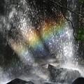 滝に虹が・・・3