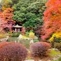 Photos: 毘沙門堂1