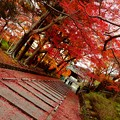 Photos: 毘沙門堂3