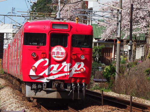 カープ電車