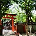 2014_0726_145312_下鴨神社摂社、河合神社
