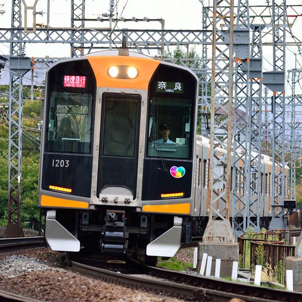 2015_1012_132051_阪神1000系電車