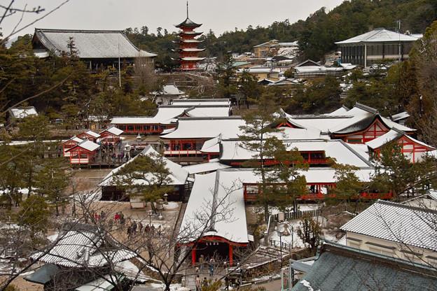 厳島神社の雪化粧