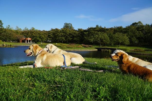 みちのく湖畔公園