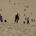 Photos: 砂丘の丘を登る_03
