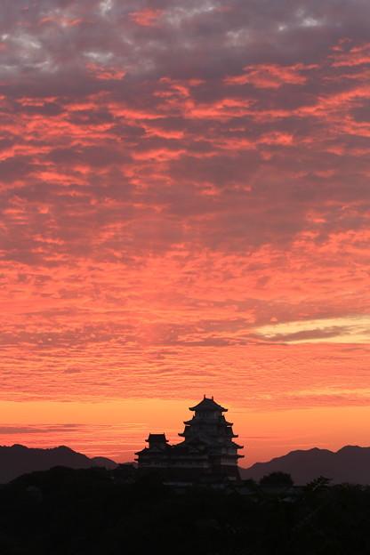 姫路城の朝焼け 全景