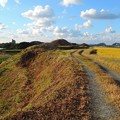 写真: 古墳横の道