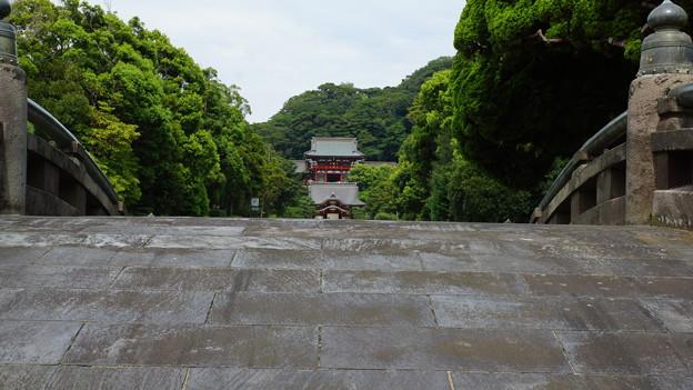 鶴岡八幡 石橋からの風景