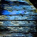 Photos: 雨粒のパルス