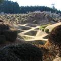 写真: 【山中城:西の丸障子堀コレクション1】西の丸は障子堀の宝庫でした!障子堀を見たら疲れが吹き飛ぶくらい感動した。山中城攻めで豊臣勢はここを本丸と勘違いしたらしい? #静岡の旅2016