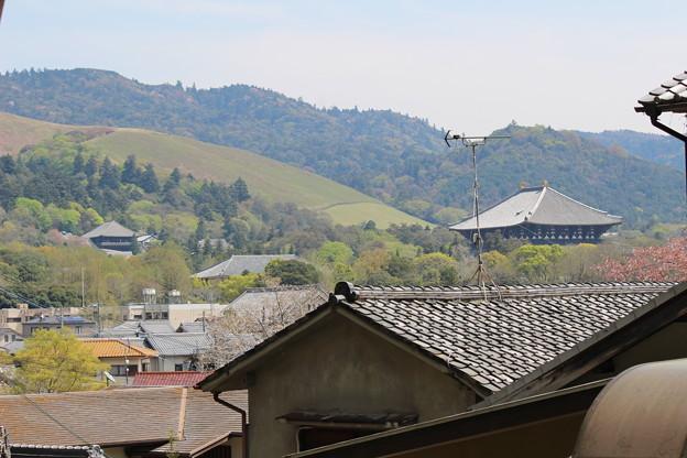 多聞山城跡から東大寺方面 #奈良散歩2016