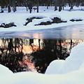 冷たい池に写る夕景