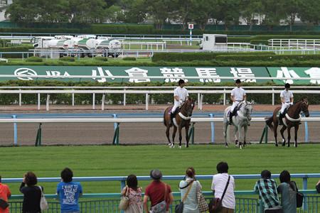 小倉競馬場 誘導馬(14/08/02)