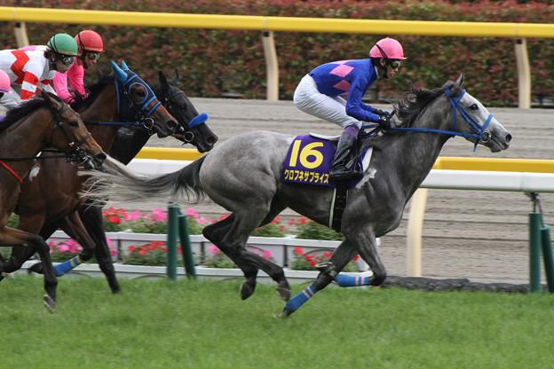 クロフネサプライズ(第74回 優駿牝馬)