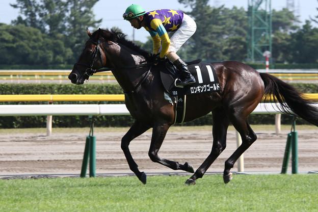 ロンギングゴールド 返し馬(阿賀野川特別)