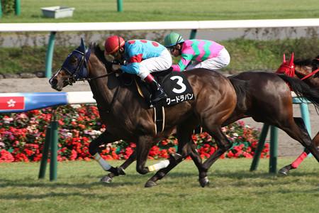クードラパン レース(15/10/04・サフラン賞)