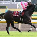 写真: ケイアイエレガント 返し馬(第63回 府中牝馬ステークス)
