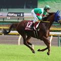 写真: スイートサルサ 返し馬(第63回 府中牝馬ステークス)