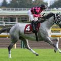 写真: スマートレイアー 返し馬(第63回 府中牝馬ステークス)