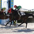 Photos: リン レース(15/12/30・2R)