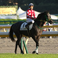 Photos: ストリートキャップ 返し馬(15/10/25・12R)