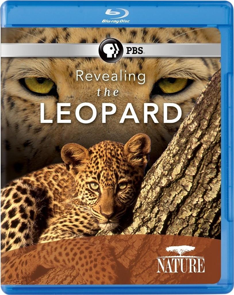 PBS-自然:揭密美洲豹(PBS Nature-Revealing the Leopard)