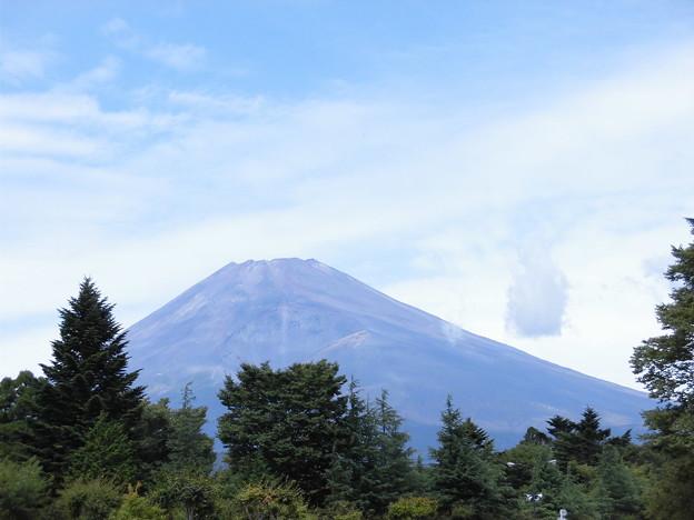 富士山 富士サファリパークより