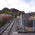 Photos: s2890_大前駅ホーム西端