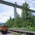 Photos: s3928_川原湯温泉駅ホームと工事中の湖上橋